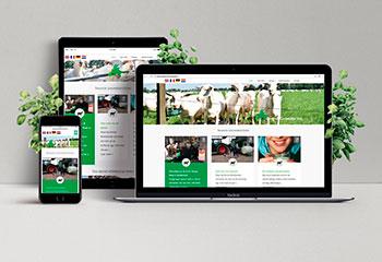 Ontwerp en ontwikkeling website Organic goatmilk cooperatie